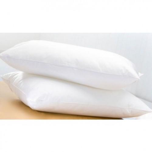 Egyptian Cotton Covered Pillow
